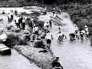 知内川の漁の様子